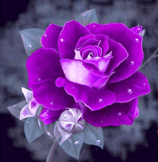 Bold Purple Corsage