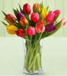 Blooming Tulip Vase