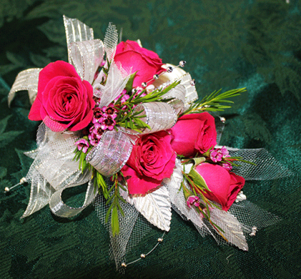 5 Bright Pink Rose Corsage