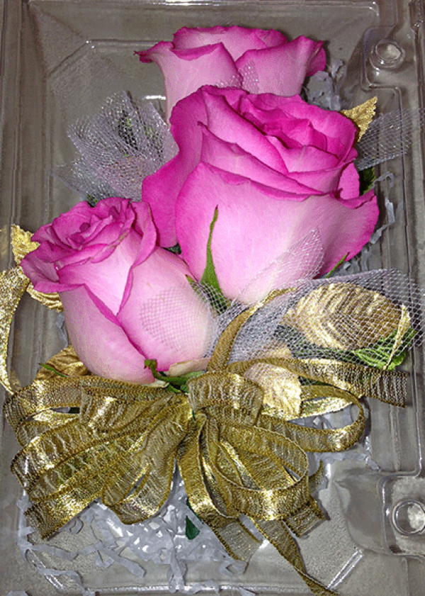 Bright Pink Tipped Roses Gold Ribbon Corsage
