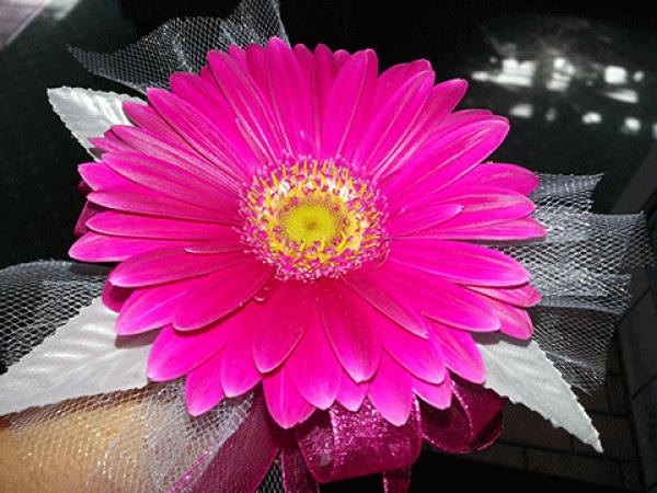 Hot Pink Gerba Daisy Wrist Corsage