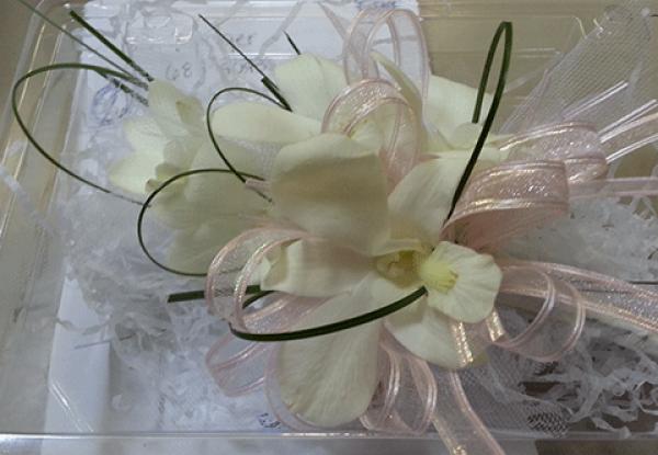 White Orchids Peach & Black Ribbon Corsage