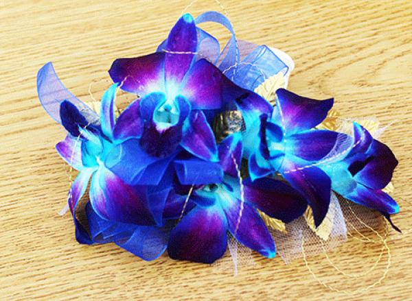 Blue-Violet Orchids Corsage
